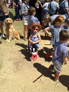 The lineup for the stick horse class was truly memorable!  Lots of fun for participants and spectators alike!