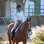 single rider on horse 2